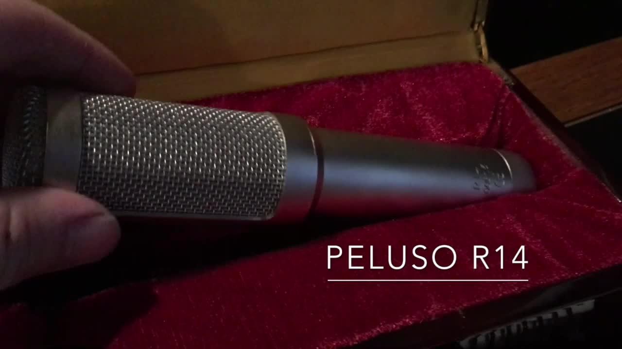 Peluso R14 铝带话筒演示 - Jesse Ray Shelby